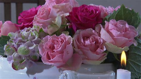 dokumentation zeit fuer rosen unter unserem himmel br