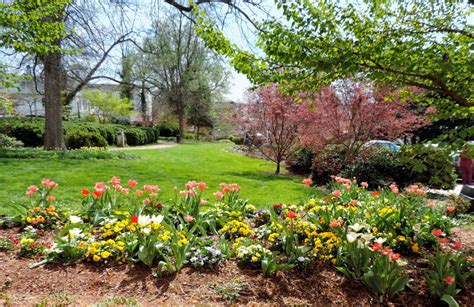 garden design the northern new york gardener some