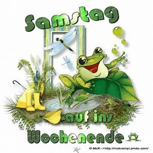 Frosch Bilder Lustig : die besten 17 ideen zu frosch zitate auf pinterest kermit die muppets und mark twain zitate ~ Whattoseeinmadrid.com Haus und Dekorationen