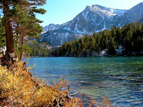 Yosemite National Park Lodging Chalet Region Yosemite Chalet