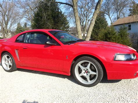 1999 Ford Mustang Svt Cobra Pictures Cargurus