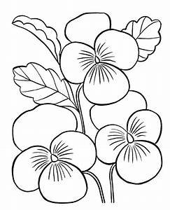 Flower Coloring Pages For Adults - AZ Coloring Pages