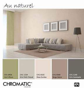 les 25 meilleures idees de la categorie couleurs de With couleur associe au gris 9 sarlon degrade