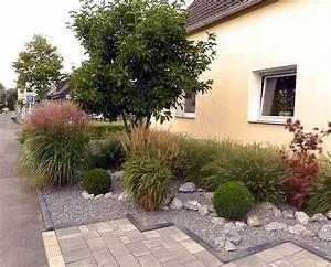Sichtschutz Pflanzen Pflegeleicht : vorgartengestaltung mit gr sern buxkugeln und ~ A.2002-acura-tl-radio.info Haus und Dekorationen
