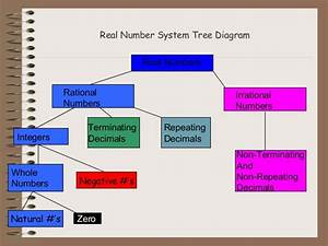 Real Numbers System