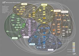 Obesity System Influence Diagram