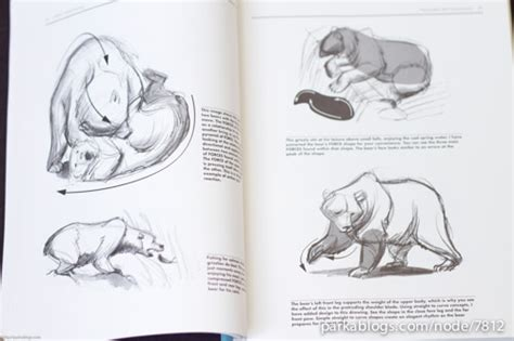 book review force animal drawing animal locomotion