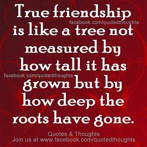 True friendship is like a tree .... | Inspirational Quotes ...