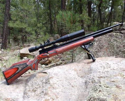 Best Air Best Air Rifles Pellet Guns For Term Survival