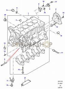 Cylinder Block - 2 4 Tdci