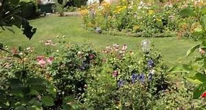 Sträucher Für Garten : duftende blumen und str ucher f r den garten lagerhaus ~ Buech-reservation.com Haus und Dekorationen