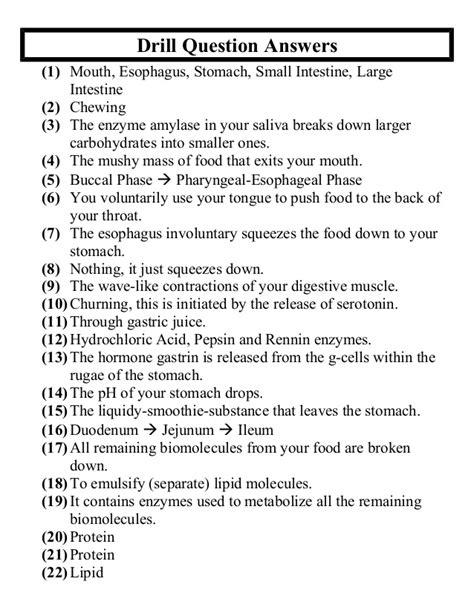 anatomy unit  digestive  excretory systems big quiz