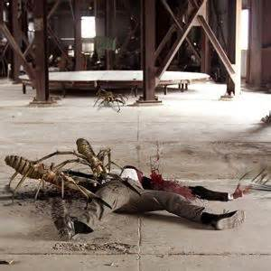 Camel Spiders  Angriff Der Monsterspinnen  Film 2011