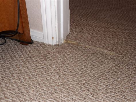 Carpet Door & Carpet/tile Transition Not Under Door; Need Your Response Carpet Pythons Size How To Pull Up Off Of Concrete Rug On Top Wrinkles Best Red Makeup Artists Dalworth Cleaning Plano Solution For Urine Cheap Offcuts Melbourne Nylon Fiber Brush