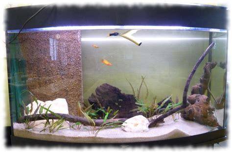 filtre sous aquarium d 233 cante interne pour aquarium construction et d 233 coration astuces et bricolage fiche et