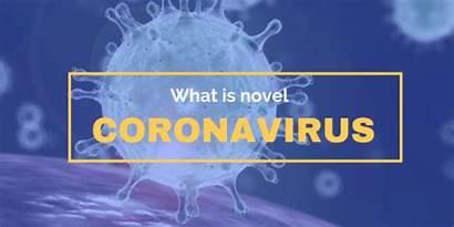 Coronavirus Novel Mean Does Healthy Lifestyle Banner