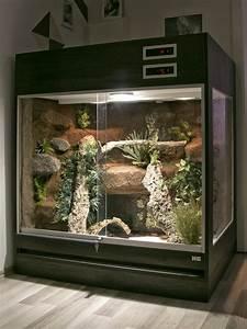 Große Reptilien Für Zuhause : terrarium f r schlangen ohne unterschrank in jeder gr e ~ Lizthompson.info Haus und Dekorationen