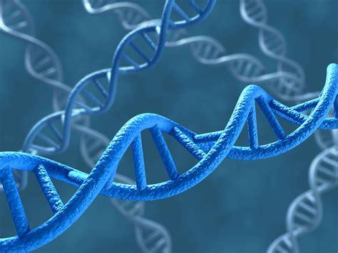 adipositas genetische ursachen