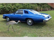 Rare Bird 1974 Pontiac LeMans Sport Coupe