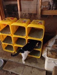 Tidy Cat Litter Containers Google Search Upcycle