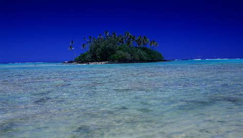 beaches zealand fails nz beach newshub