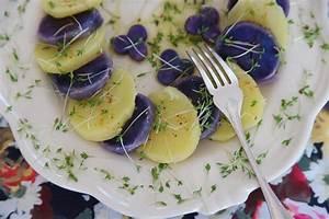 Faire Germer Des Graines De Poivrons : recettes de cressonnette par val rie du blog 1 2 3 d gustez comment faire germer la ~ Melissatoandfro.com Idées de Décoration