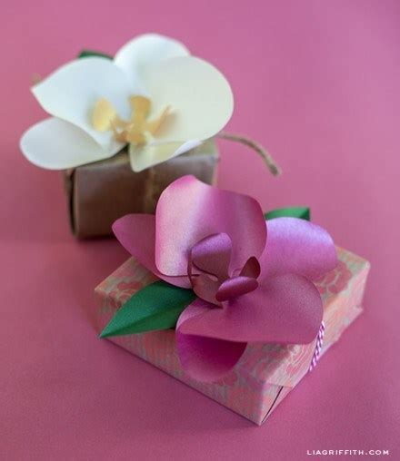 tutorial template diy paper orchids scrap booking