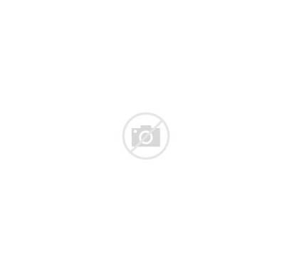 Zebra Animal Face Head Wild Cartoon Clipart