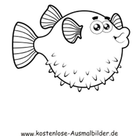 kostenlose ausmalbilder ausmalbild kugelfisch