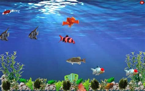High Definition Animated Wallpapers - free animated underwater wallpaper wallpapersafari