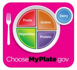Choose My Plate Lesson Plan FamilyConsumerSciences com