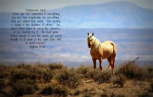 Picasso's Ban... Free Horses Quotes