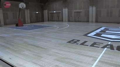 Basketball Japan League Court Pro Led Sports