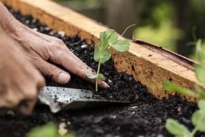 Hochbeet Richtig Anlegen : hochbeet anlegen planung aufbau fruchtfolge und mehr ~ Frokenaadalensverden.com Haus und Dekorationen