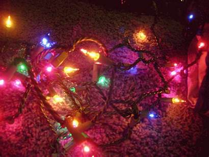 Christmas Lights Twinkle Colored Mix Really Them