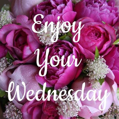 enjoy  wednesday pictures   images