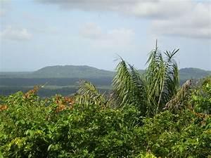 Artisanat De Guyane : montagne des singes guyane l 39 artisanat et l 39 industrie ~ Premium-room.com Idées de Décoration
