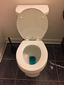 tank toilet cleaning tablet wikipedia