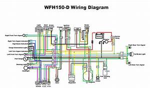 Gy6 150 Wiring Diagram Copy 150cc Scooter Within  U2013 Volovets Info