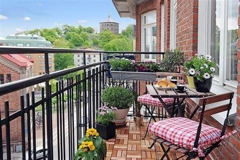 arredare balconi e terrazzi terrazzi e balconi piante da terrazzo caratteristiche