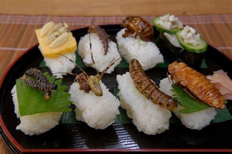 listes de insectes comestibles insectes comestibles
