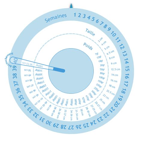 echelle de developpement du bebe calculatrices