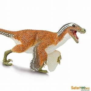 Feathered Velociraptor | Diorama Animals | 100032  Velociraptor