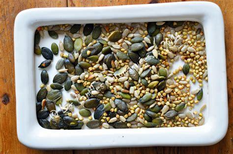 cuisiner les graines de sarrasin cuisiner les graines de sarrasin sans gluten sans