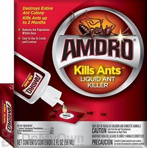 Amdro Kills Ants Liquid Dropper Ant Killer