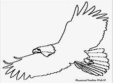 Sketsa Burung Kakak Tua Tattoo Art