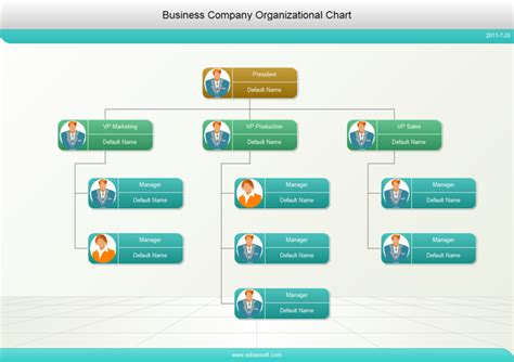 strategic management corporate controls  structure