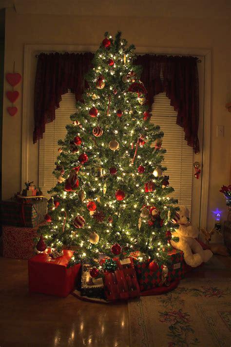 creative ways  decorate  christmas tree terra