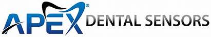Apex Dental Sensor System Llc Radiography Formally
