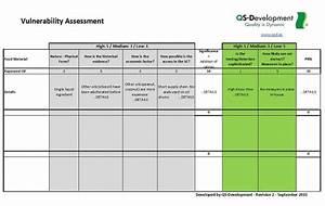fancy vulnerability assessment template collection With vulnerability assessment document